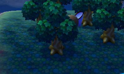 animal-crossing-new-leaf-night-screenshot